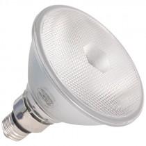 PAR38 60 Watt Flood Light Bulb
